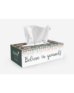Kosher Spur Facial Tissue Box, Pack Of 6, 2 Layered, 100 Pulls Each (Total 600 Pulls)