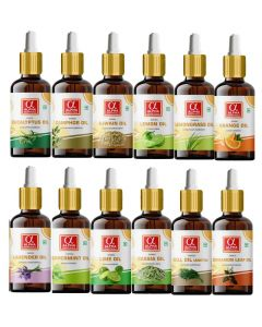 Alpha Essenticals Eucalyptus, Camphor, Ajwain, Lemon, Lemongrass, Orange, Lavender, Peppermint, Lime, Cassia, Dill and Cinnamon Leaf Essential Oil, Set of 12 oils, 15ml Each