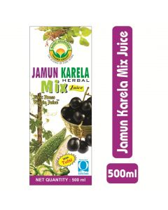 Basic Ayurveda Jamun Karela Herbal Mix Juice 500ml