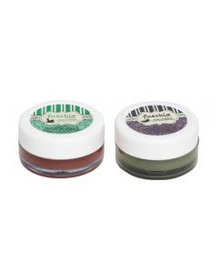 Fuschia Choco Butter & Black Currant Lip Balm Combo 16gm