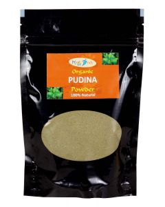 HealUrBody Pudina Powder-400 (Pack of 1)