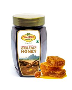 Dhampur Green Pure Organic Honey 500g