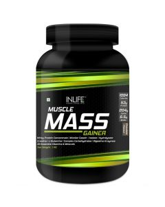 InLife Muscle Mass Gainer with Whey Protein Powder Bodybuilding Supplement 1kg