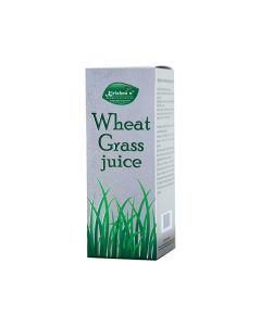 Krishna's Wheatgrass Juice  Nature's Finest Medicine 500 ml