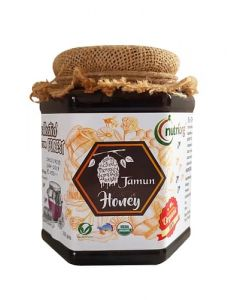 Nutriorg Certified Organic Honey with Jamun Flavor 500g