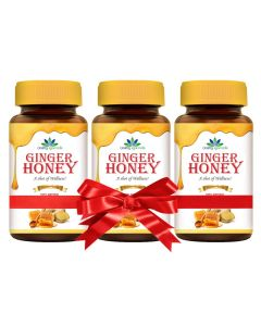 Quality Ayurveda Ginger Honey 250g (Pack of 2)