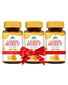 Quality Ayurveda Lemon Honey 250g (Pack of 2)