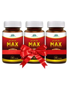 Quality Ayurveda Paurush MAX - 60 Caps (Pack of 2)