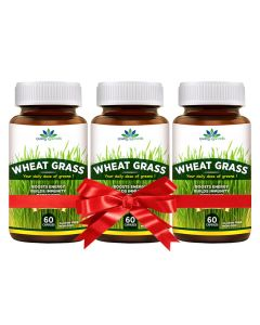 Quality Ayurveda Wheat Grass - 60 Caps (Pack of 2)