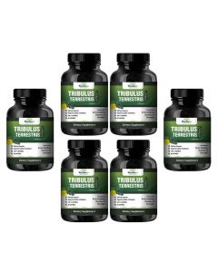 VEDA MAXX Tribulus Terrestris Extract-500Mg 60 Capsules, 40% Saponins for a Bodybuilding or Training supplement (Pack of 06 Each Contain 500Mg - 60 Capsules)
