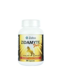 Zidaa Zidamayte Forte for Men Vitality Power - 30 Capsules