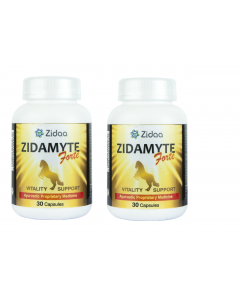 Zidaa Zidamayte Forte for Men Vitality Power - Pack of 2 (30 Capsules Each)